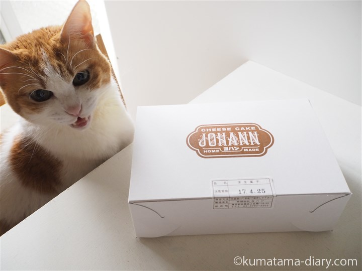 ヨハンのチーズケーキとたまき