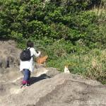 【神奈川県三浦市】城ヶ島で猫さんと一緒に岩山に登りました