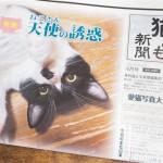 『月刊猫とも新聞』2017年6月号の特集は「天使(ねこさん)の誘惑」です