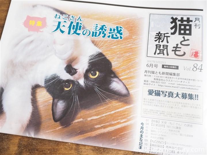 月刊猫とも新聞6月号