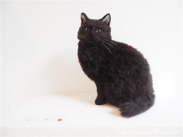 猫ラボさん黒猫