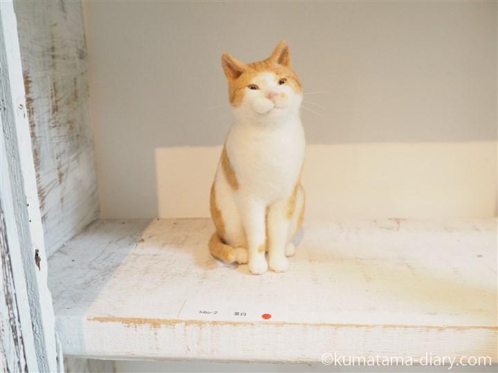 猫ラボさん