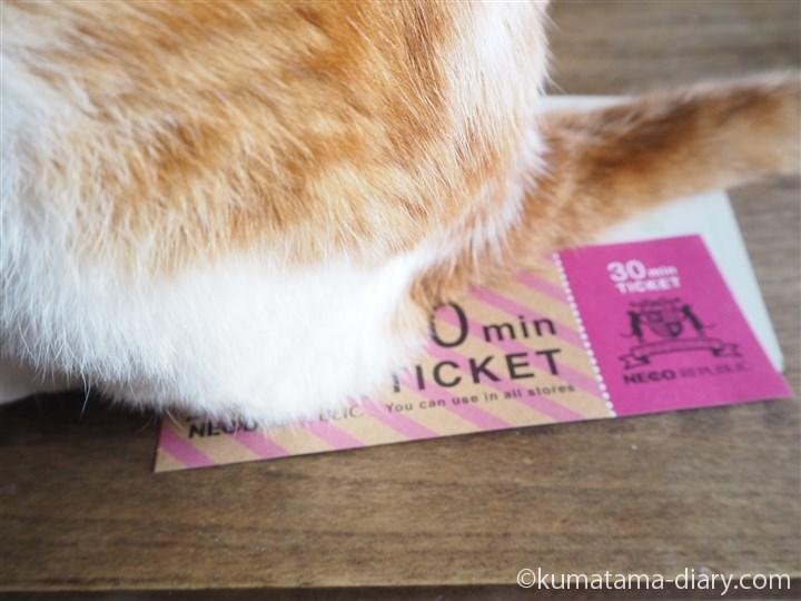 チケットの上に乗るたまき