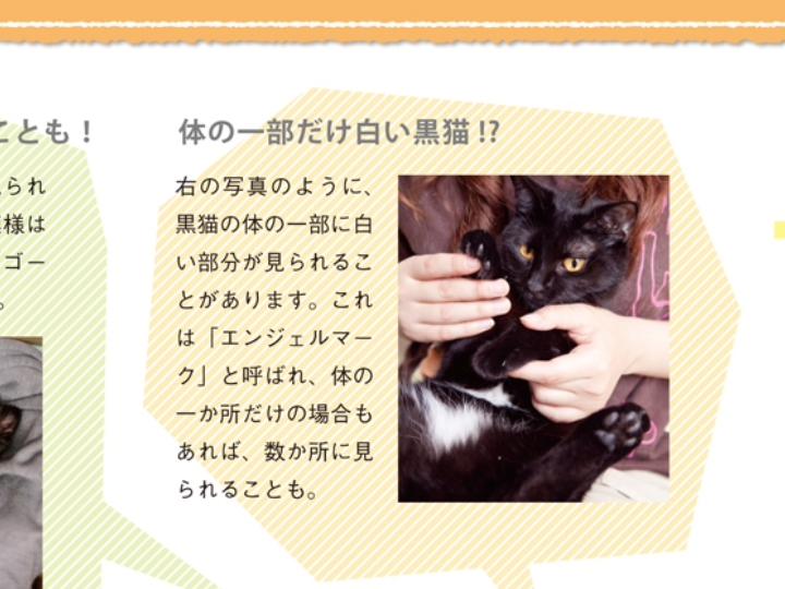 黒猫エンジェルマーク