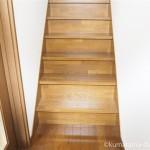 慎重に階段を下りてくる猫【動画】