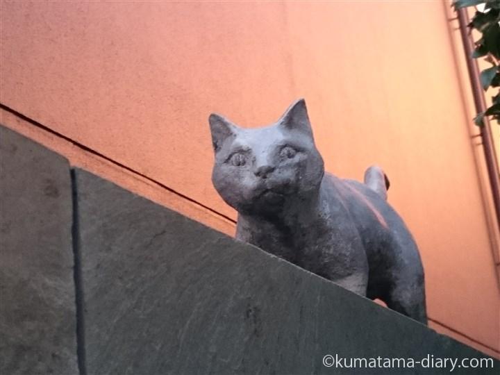夏目漱石旧居跡の猫さん