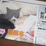 『月刊猫とも新聞』2017年11月号の特集は「猫絵本」です