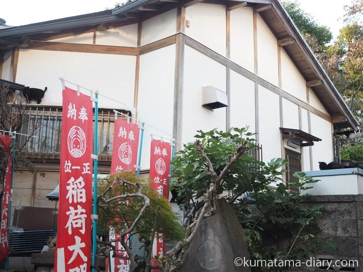 稲荷神社の黒猫さん