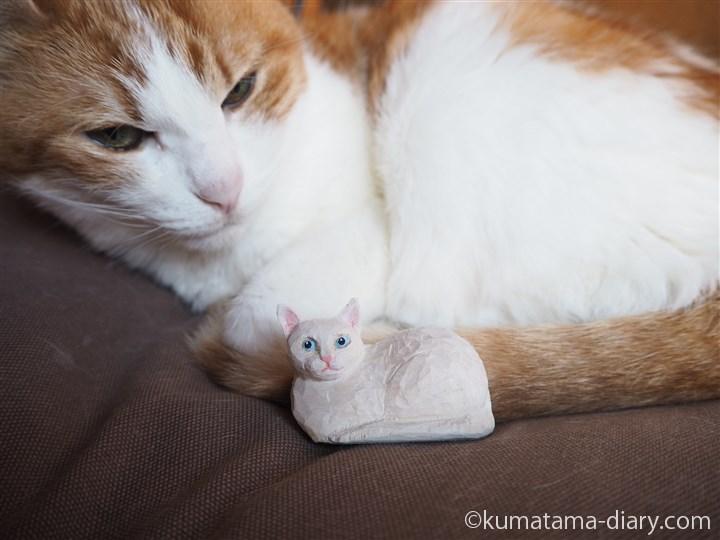 木彫り白猫マグネットとたまき