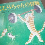 トラ猫が可愛らしい絵本「ことらちゃんの冒険」を読みました