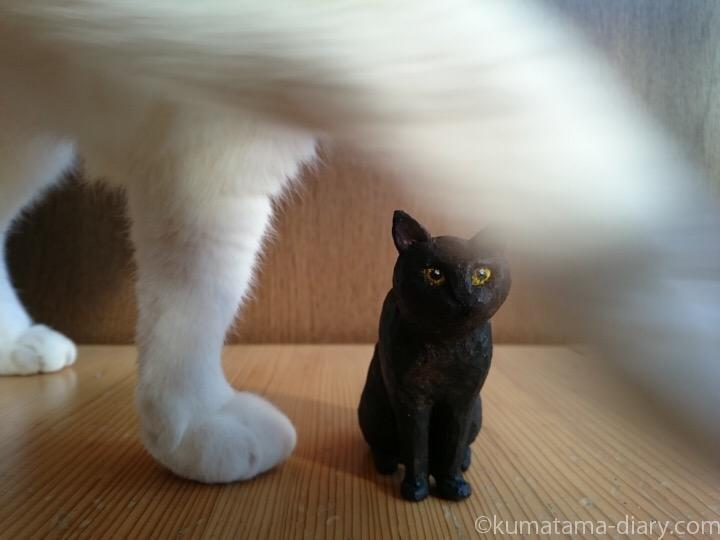 くま黒猫木彫りとたまきの足