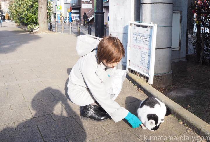白黒猫さんと私