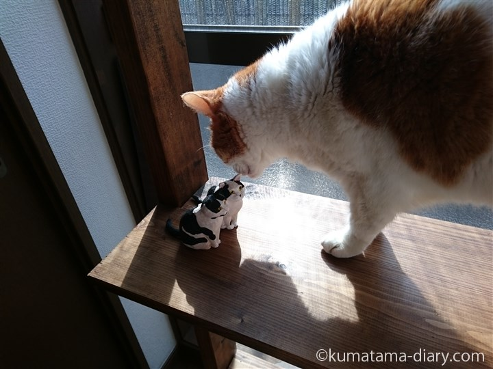 木彫り猫をにおうたまき