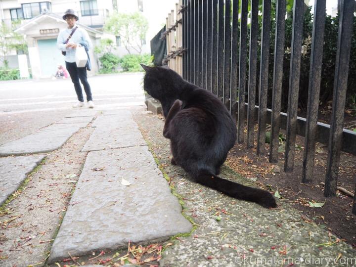 黒猫さんと彼