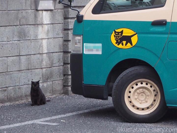 クロネコヤマトと黒猫さん