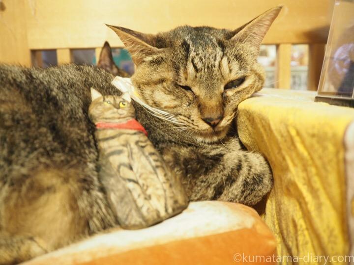 おはぎちゃんと木彫り猫