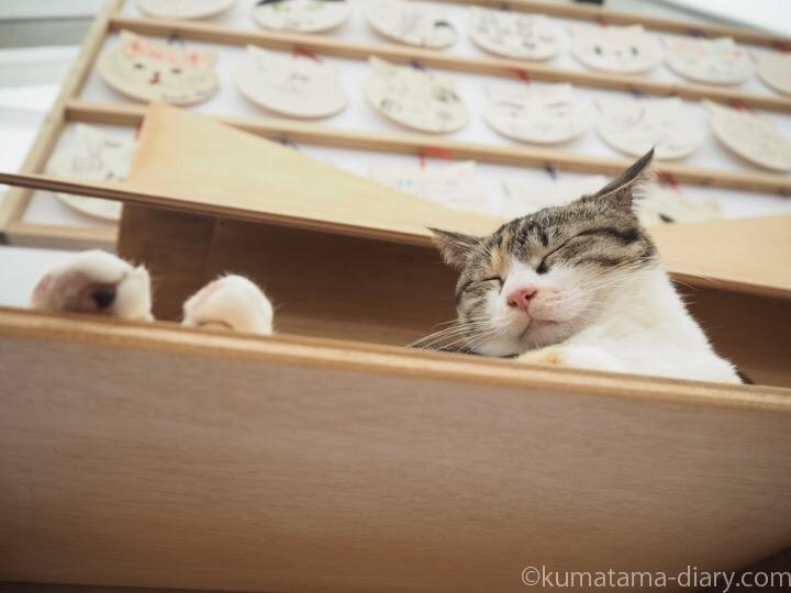 ねこ神社三毛猫さん