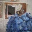くまの写真と紫陽花