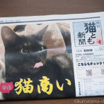 『月刊猫とも新聞』2018年7月号の特集は「猫商い」です