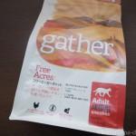 プレミアムキャットフード専門店tamaで買った「ギャザー フリーエーカー キャット」は小粒でペロ食い