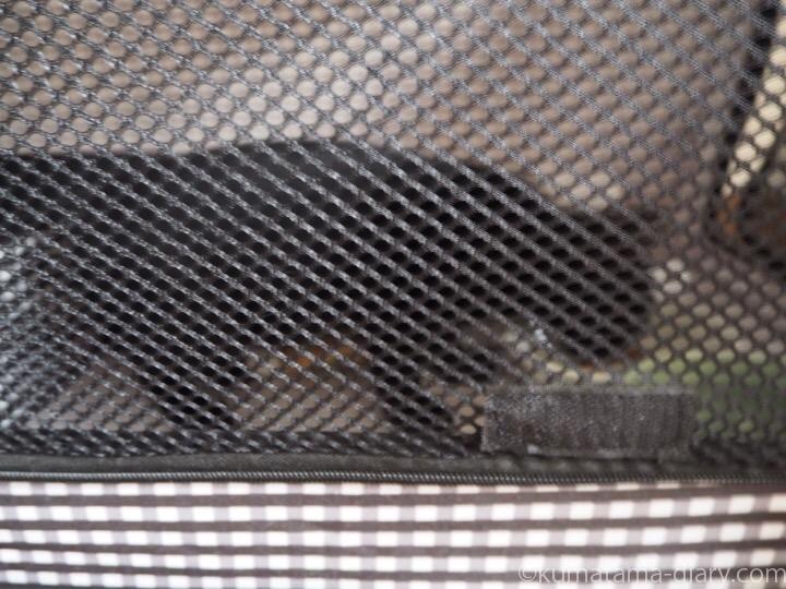 エサを食べる黒猫さん子猫