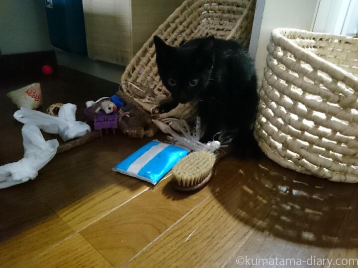 おもちゃかごをひっくり返すふみお