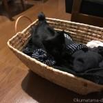 「幸せのインナーねこ」をふみふみする子猫