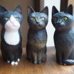 木彫り猫のモデルを募集します ※終了しました