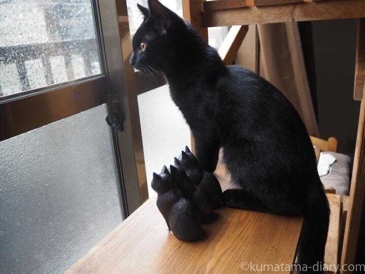 外を見る木彫り猫とふみお