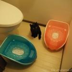 子猫のトイレも「リッチェル おまるdeキャット」にしました