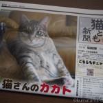 『月刊猫とも新聞』2018年9月号の特集は「猫さんのカカト」です