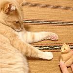ミルクティー色の木彫り猫のご感想