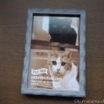「日本ペットシッターサービス文京店」からフォトフレームが届きました