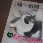『月刊猫とも新聞』2019年1月号の特集は「猫さんのお手々」です