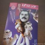 猫とアートの情報誌「猫町ぽけっと5号」が届きました