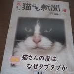 『月刊猫とも新聞』2019年3月号の特集は「猫さんの皮はなぜタプタプか」です