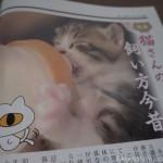 『月刊猫とも新聞』2019年4月号の特集は「猫さんの飼い方今昔」です