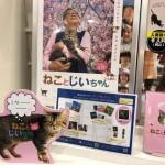 岩合光昭さんの初監督映画「ねことじいちゃん」を観てきました