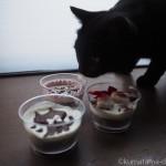 子猫の誕生日を「帝塚山WANBANA」の猫用ケーキでお祝い♪