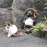 【谷中】置物かと思った三毛猫さん