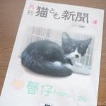 『月刊猫とも新聞』2019年5月号の特集は「春仔」です