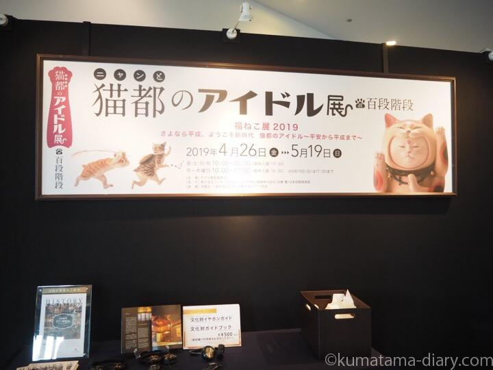 猫都のアイドル展