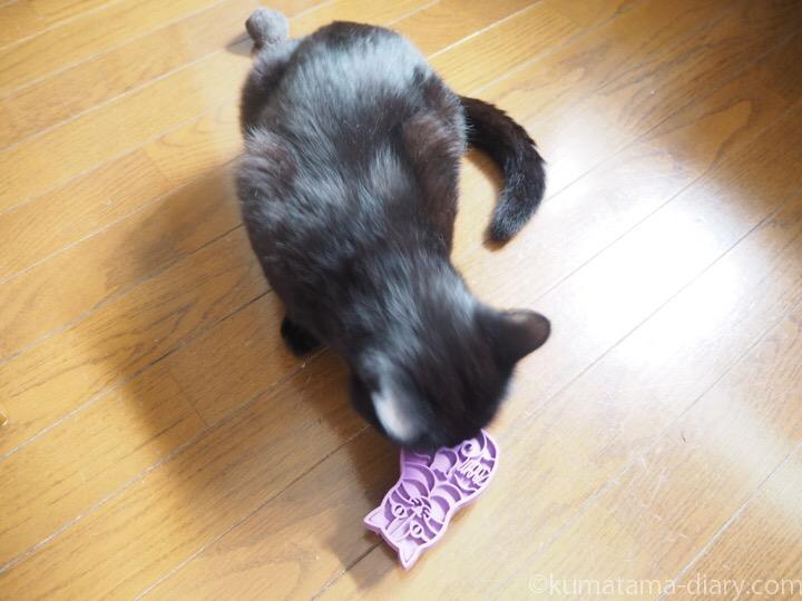 ふみおと猫型ブラシ