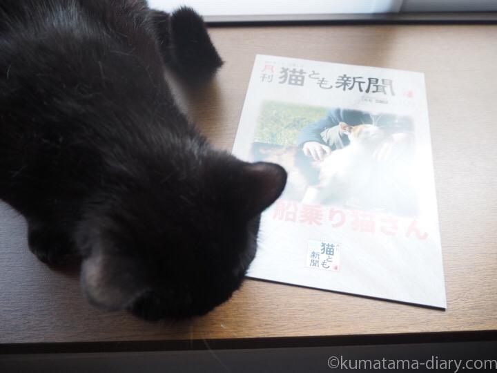 ふみおと月刊猫とも新聞