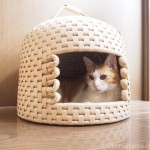 yonekichiさんの「猫ちぐら」が届きました