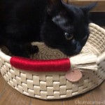 yonekichiさんの「鍋型ベッド」を猫にプレゼント♪