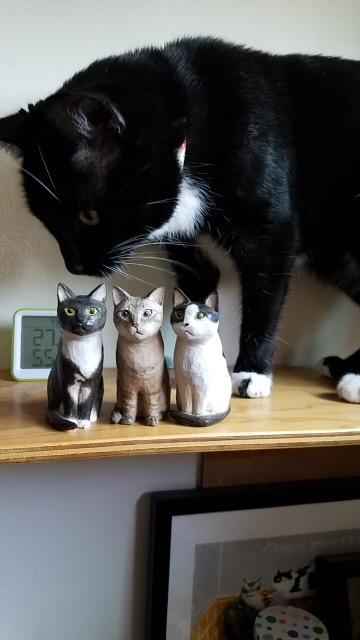 おネコちゃんと3匹の木彫り猫
