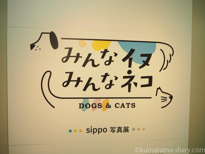 みんなイヌみんなネコ
