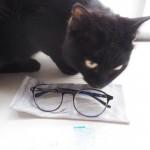 Zoffのパソコンメガネ「Zoff PC CLEAR PACK」をチェックする猫