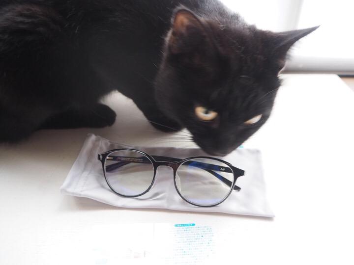 Zoff PCメガネとふみお